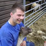 Gurli er lidt lun på fåreklipperen sikken nogle øjne hun sender ham :-)